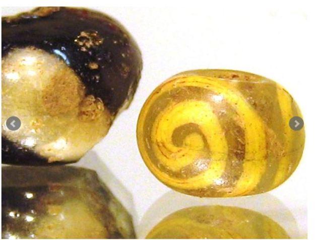 bead newt